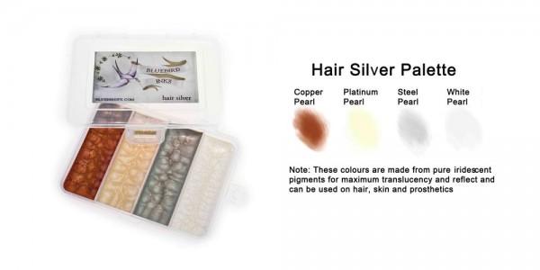 Hair Silver Palette